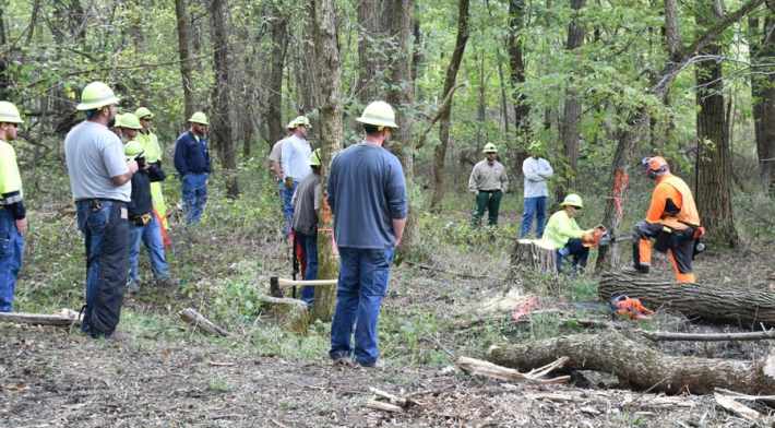 Macon Electric Cooperative Hosts Tree Felling Training for Missouri Linemen